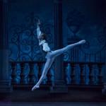 2015-11-25-russian-national-ballet-1_23033313930_o